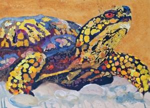 Turtle_1sm[2]