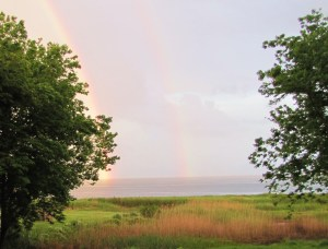 rainbow 005