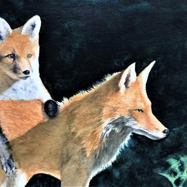 Mama Fox and Kit